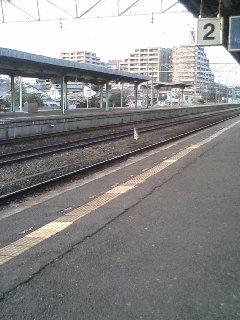 image/kurochiyo-2006-03-31T18:02:35-1.JPG