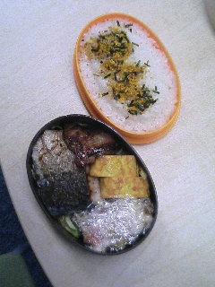 image/kurochiyo-2006-05-30T23:10:37-1.JPG