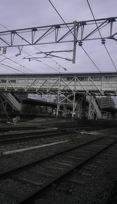 IMAG0139.jpg