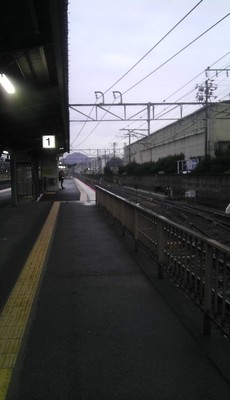 IMAG0529.jpg