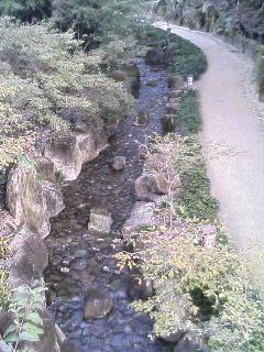 image/kurochiyo-2005-11-08T14:51:32-1.JPG