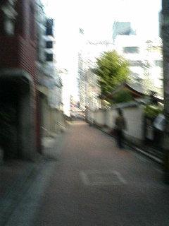 image/kurochiyo-2005-11-19T09:20:36-1.JPG