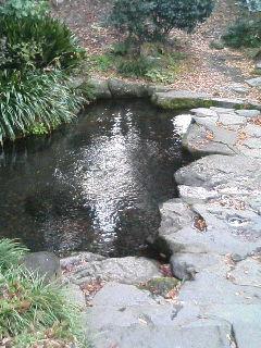 image/kurochiyo-2005-11-22T09:03:18-1.JPG