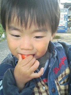 image/kurochiyo-2005-11-22T09:59:21-1.JPG