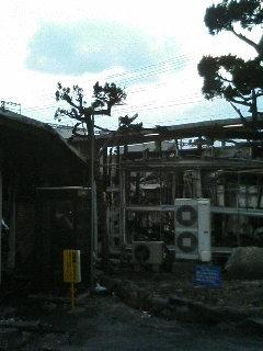 image/kurochiyo-2006-01-10T16:56:04-1.JPG
