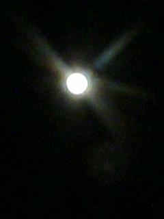 image/kurochiyo-2006-02-12T19:26:48-1.JPG