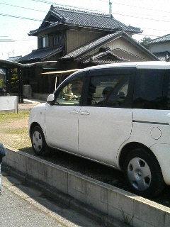 image/kurochiyo-2006-04-20T13:24:22-1.JPG