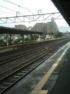 image/kurochiyo-2006-06-25T08:54:09-1.JPG