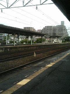 image/kurochiyo-2006-07-01T08:53:18-1.JPG