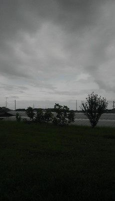 IMAG1089.jpg