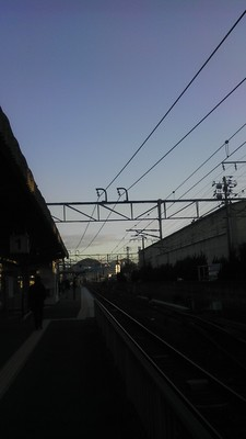 IMAG1349.jpg