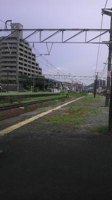 IMAG1544.jpg